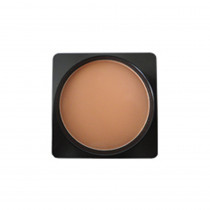 Perfection powder foundation refill